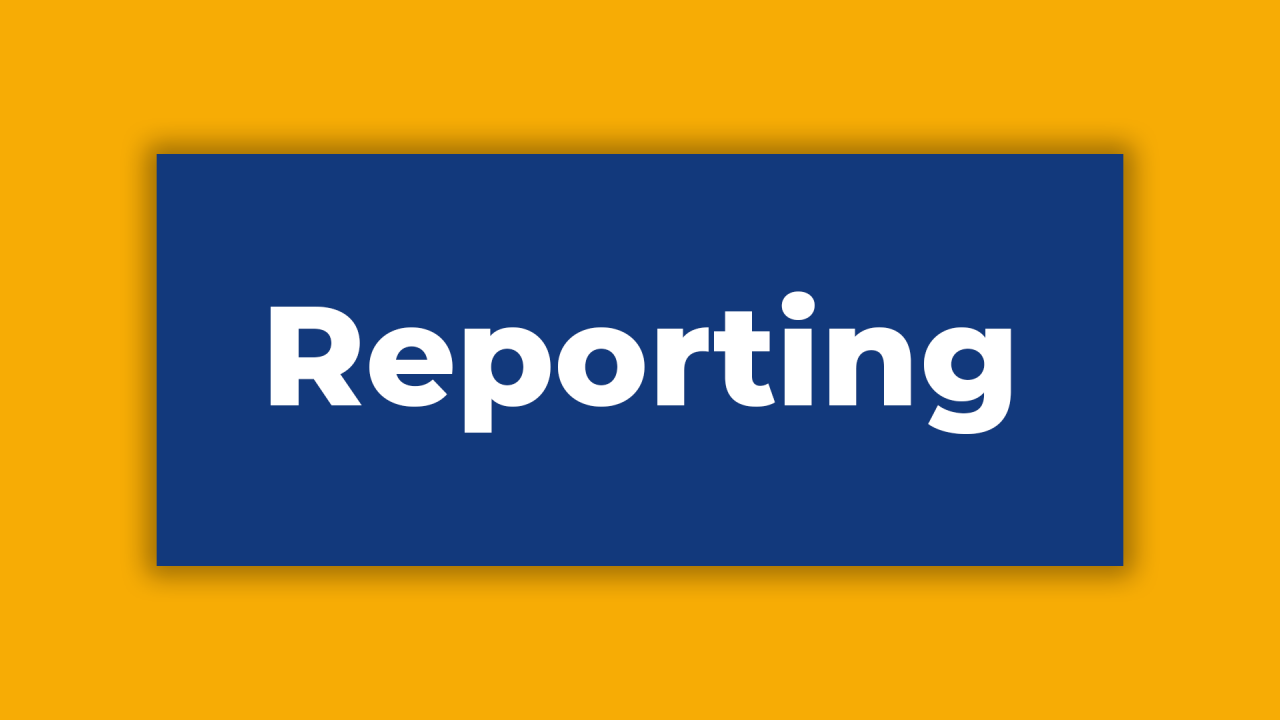 Back to Basics - Reporting cover