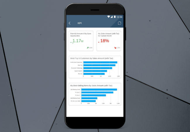 SAP Business One analytics on mobile