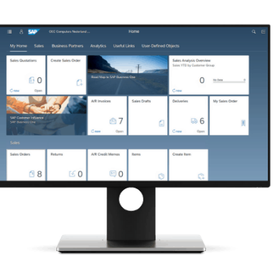 SAP Business one v1- on a monitor